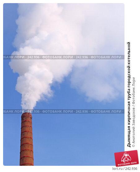 Дымящая кирпичная труба городской котельной, фото № 242936, снято 4 февраля 2006 г. (c) Анатолий Заводсков / Фотобанк Лори