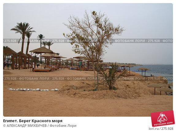Египет. Берег Красного моря, фото № 275928, снято 24 февраля 2008 г. (c) АЛЕКСАНДР МИХЕИЧЕВ / Фотобанк Лори