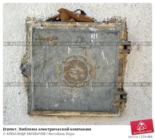 Египет. Эмблема электрической компании, фото № 274484, снято 19 февраля 2008 г. (c) АЛЕКСАНДР МИХЕИЧЕВ / Фотобанк Лори