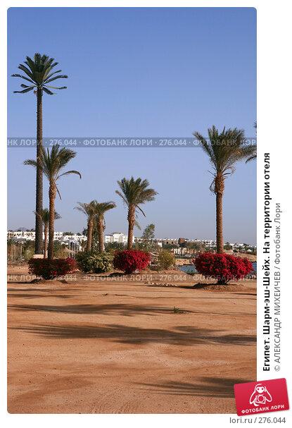 Египет. Шарм-эш-Шейх. На территории отеля, фото № 276044, снято 18 февраля 2008 г. (c) АЛЕКСАНДР МИХЕИЧЕВ / Фотобанк Лори
