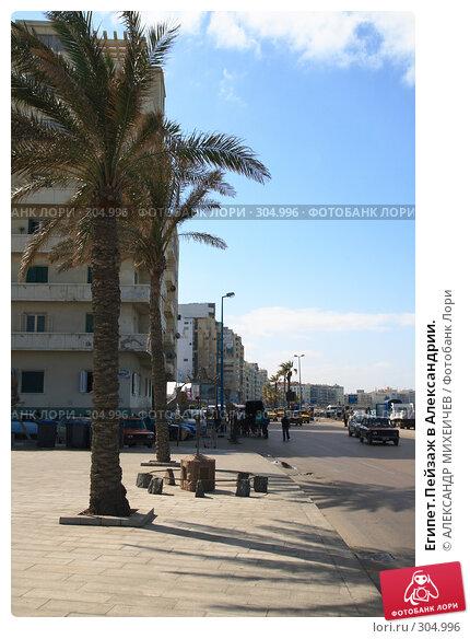 Египет.Пейзаж в Александрии., фото № 304996, снято 26 февраля 2008 г. (c) АЛЕКСАНДР МИХЕИЧЕВ / Фотобанк Лори