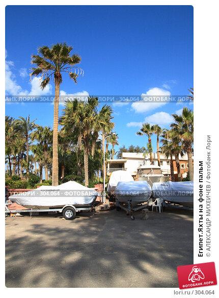 Египет.Яхты на фоне пальм, фото № 304064, снято 26 февраля 2008 г. (c) АЛЕКСАНДР МИХЕИЧЕВ / Фотобанк Лори