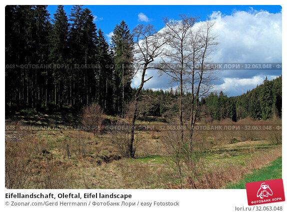Eifellandschaft, Oleftal, Eifel landscape. Стоковое фото, фотограф Zoonar.com/Gerd Herrmann / easy Fotostock / Фотобанк Лори