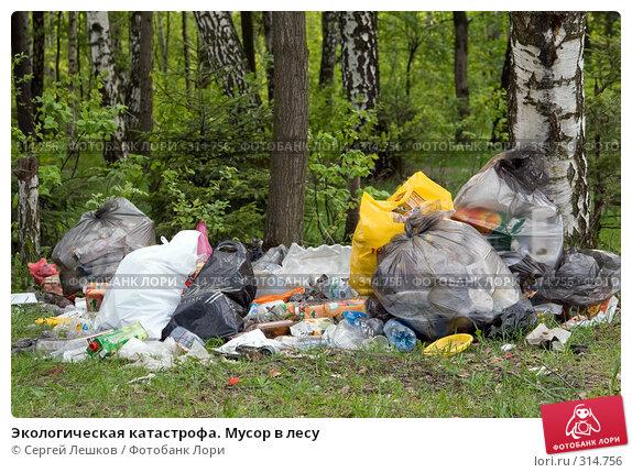 Экологическая катастрофа. Мусор в лесу, фото № 314756, снято 18 мая 2008 г. (c) Сергей Лешков / Фотобанк Лори
