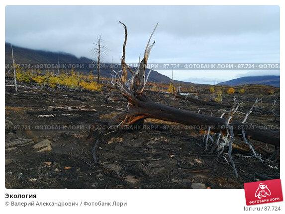 Экология, фото № 87724, снято 29 июня 2017 г. (c) Валерий Александрович / Фотобанк Лори