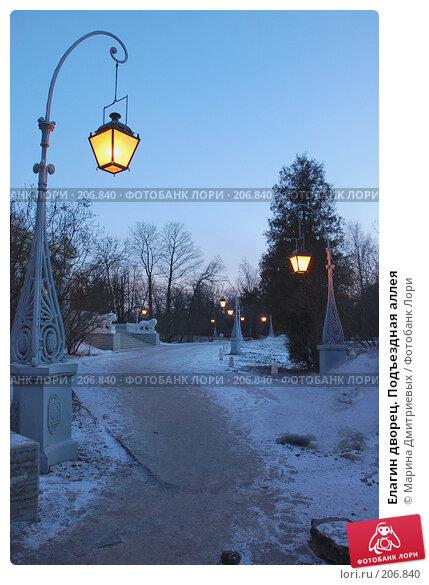 Елагин дворец. Подъездная аллея, фото № 206840, снято 16 февраля 2008 г. (c) Марина Дмитриевых / Фотобанк Лори