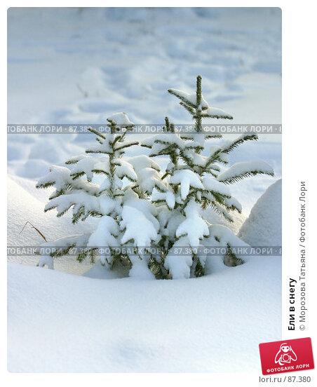 Купить «Ели в снегу», фото № 87380, снято 10 декабря 2005 г. (c) Морозова Татьяна / Фотобанк Лори