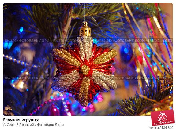 Купить «Елочная игрушка», фото № 184340, снято 30 декабря 2007 г. (c) Сергей Драцкий / Фотобанк Лори