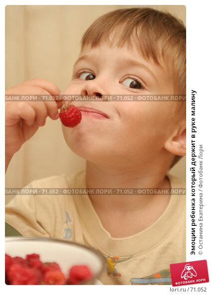 Эмоции ребенка который держит в руке малину, фото № 71052, снято 11 августа 2007 г. (c) Останина Екатерина / Фотобанк Лори