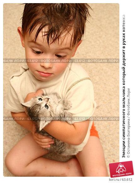 Эмоции симпатичного мальчика который держит в руках котенка, фото № 63612, снято 4 июля 2007 г. (c) Останина Екатерина / Фотобанк Лори