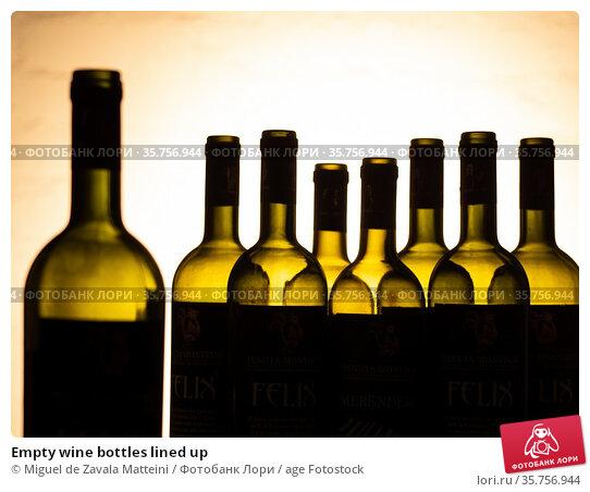 Empty wine bottles lined up. Стоковое фото, фотограф Miguel de Zavala Matteini / age Fotostock / Фотобанк Лори