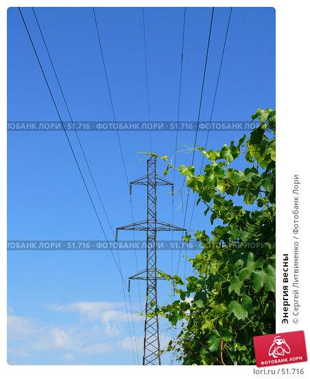 Энергия весны, фото № 51716, снято 11 июня 2007 г. (c) Сергей Литвиненко / Фотобанк Лори