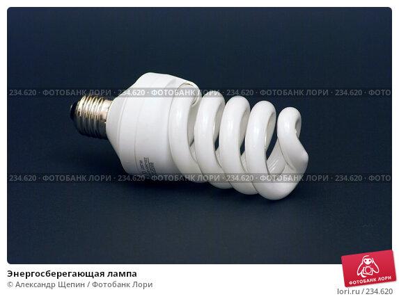 Купить «Энергосберегающая лампа», эксклюзивное фото № 234620, снято 26 марта 2008 г. (c) Александр Щепин / Фотобанк Лори