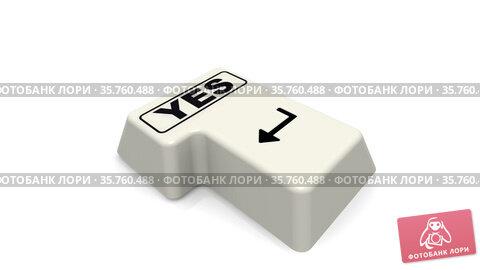 Enter key with YES word. Стоковая анимация, видеограф WalDeMarus / Фотобанк Лори