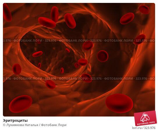 Эритроциты, иллюстрация № 323976 (c) Лукиянова Наталья / Фотобанк Лори