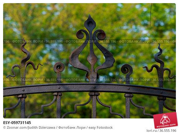 ESY-059731145. Стоковое фото, фотограф Zoonar.com/Judith Dzierzawa / easy Fotostock / Фотобанк Лори