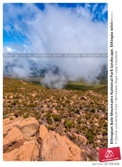 Ethiopian Bale Mountains National Park landscape. Ethiopia wilderness... Стоковое фото, фотограф Zoonar.com/Artush Foto / easy Fotostock / Фотобанк Лори