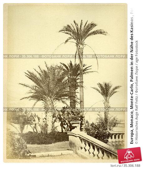 Europa, Monaco, Monte-Carlo, Palmen in der Nähe des Kasinos , Fotografie... Редакционное фото, фотограф Historisches Auge Ralf Feltz / age Fotostock / Фотобанк Лори