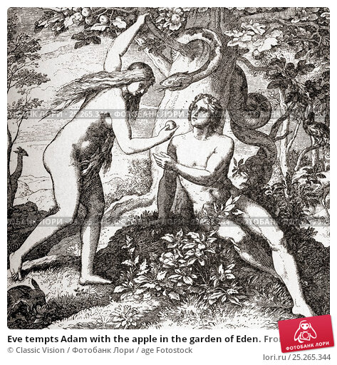 punishment of adam and eve in the bible essay Essays sin, punishment and redemption in bible, sin, punishment  the punishment of the whole life and the punishment of conscience adam and eve are driven.