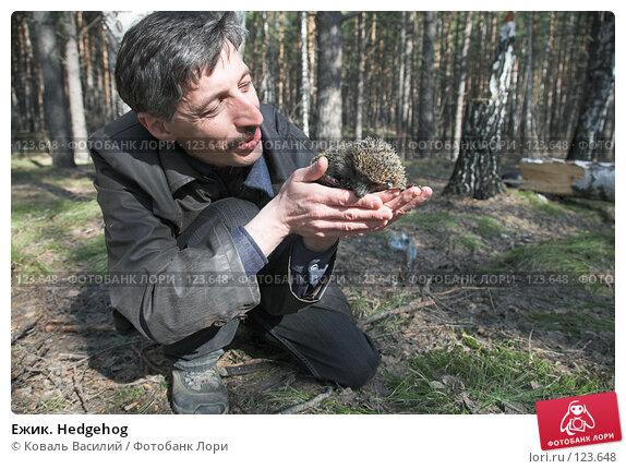 Ежик. Hedgehog, фото № 123648, снято 22 апреля 2007 г. (c) Коваль Василий / Фотобанк Лори