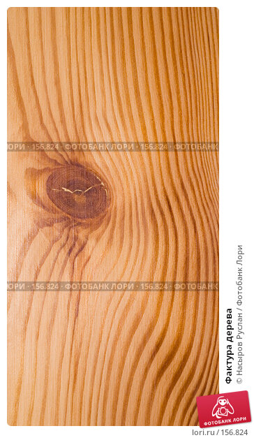 Купить «Фактура дерева», фото № 156824, снято 19 декабря 2007 г. (c) Насыров Руслан / Фотобанк Лори