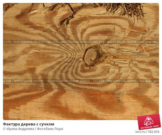 Купить «Фактура дерева с сучком», фото № 182416, снято 20 января 2008 г. (c) Ирина Андреева / Фотобанк Лори