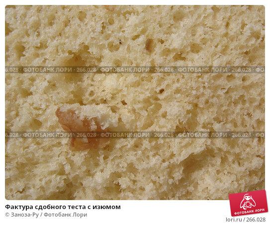 Купить «Фактура сдобного теста с изюмом», фото № 266028, снято 26 апреля 2008 г. (c) Заноза-Ру / Фотобанк Лори