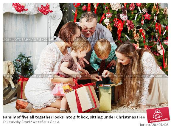 Купить «Family of five all together looks into gift box, sitting under Christmas tree», фото № 20405408, снято 26 декабря 2013 г. (c) Losevsky Pavel / Фотобанк Лори