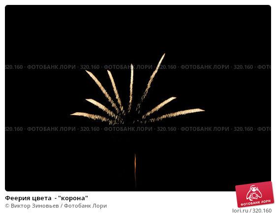 "Феерия цвета  - ""корона"", фото № 320160, снято 28 октября 2016 г. (c) Виктор Зиновьев / Фотобанк Лори"