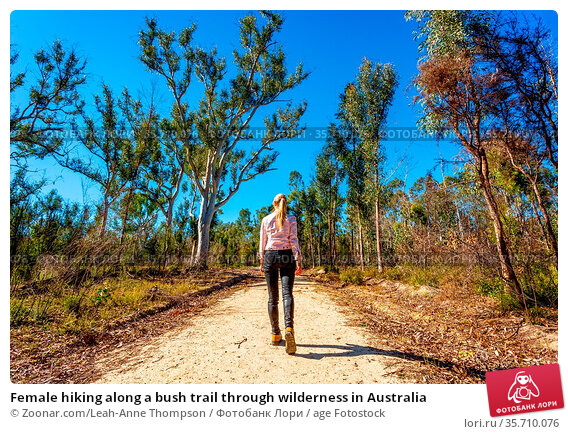 Female hiking along a bush trail through wilderness in Australia. Стоковое фото, фотограф Zoonar.com/Leah-Anne Thompson / age Fotostock / Фотобанк Лори