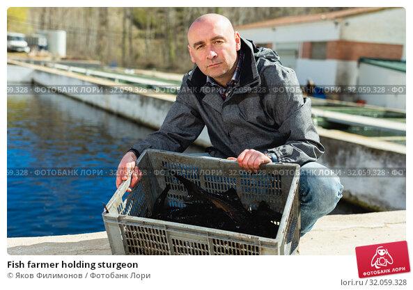 Fish farmer holding sturgeon. Стоковое фото, фотограф Яков Филимонов / Фотобанк Лори