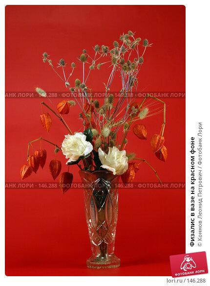 Физалис в вазе на красном фоне, фото № 146288, снято 13 декабря 2007 г. (c) Коннов Леонид Петрович / Фотобанк Лори