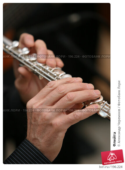 Купить «Флейта», фото № 196224, снято 22 марта 2007 г. (c) Александр Черемнов / Фотобанк Лори
