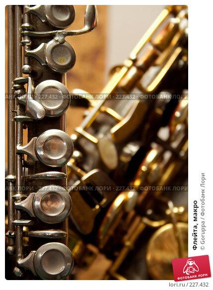 Флейта, макро, фото № 227432, снято 23 февраля 2008 г. (c) Goruppa / Фотобанк Лори