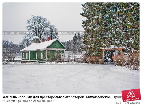 Дом престарелых пушкинские горы уход за больными паркинсоном