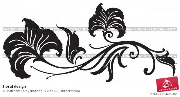 floral design. Стоковая иллюстрация, иллюстратор Matthew Cole / PantherMedia / Фотобанк Лори