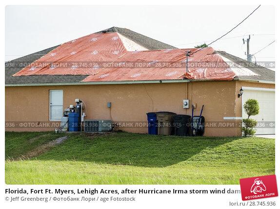 Купить «Florida, Fort Ft. Myers, Lehigh Acres, after Hurricane Irma storm wind damage destruction aftermath, tarp waterproof covering roof, house home residence, exterior, rear yard,», фото № 28745936, снято 25 сентября 2017 г. (c) age Fotostock / Фотобанк Лори
