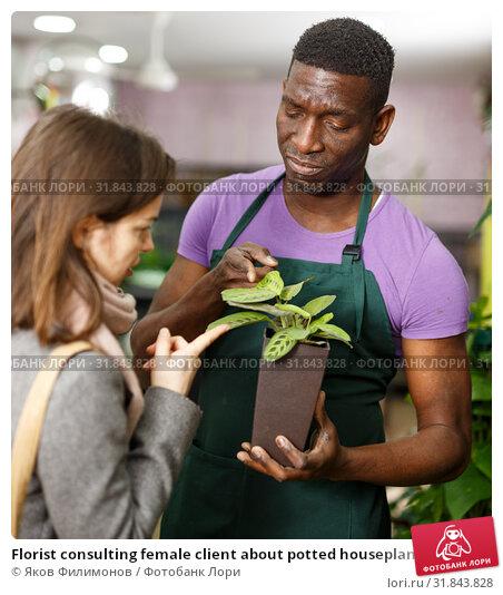 Купить «Florist consulting female client about potted houseplant», фото № 31843828, снято 14 февраля 2019 г. (c) Яков Филимонов / Фотобанк Лори