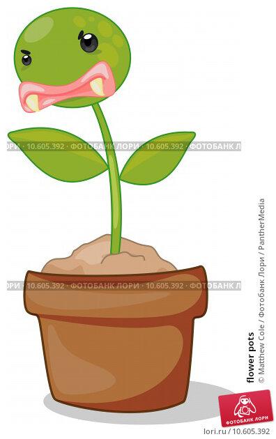 flower pots. Стоковая иллюстрация, иллюстратор Matthew Cole / PantherMedia / Фотобанк Лори