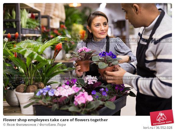 Flower shop employees take care of flowers together. Стоковое фото, фотограф Яков Филимонов / Фотобанк Лори