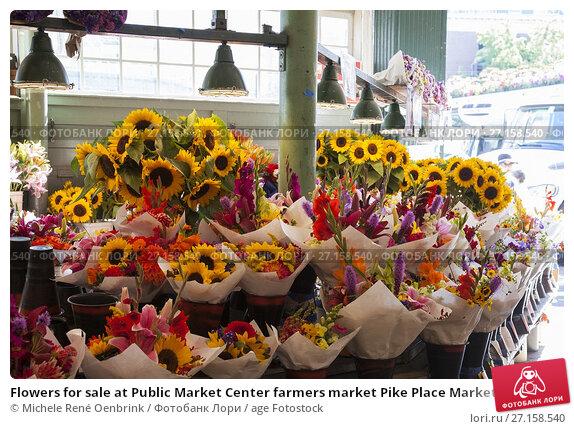 Сайт коробейники купить цветы