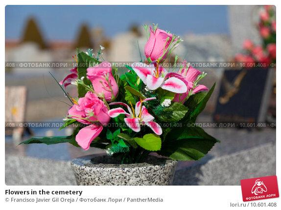 Flowers in the cemetery. Стоковое фото, фотограф Francisco Javier Gil Oreja / PantherMedia / Фотобанк Лори