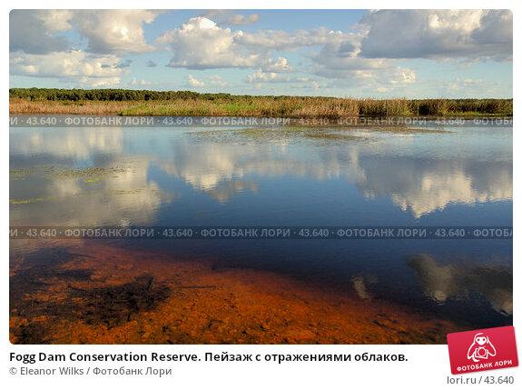 Купить «Fogg Dam Conservation Reserve. Пейзаж с отражениями облаков.», фото № 43640, снято 13 мая 2007 г. (c) Eleanor Wilks / Фотобанк Лори