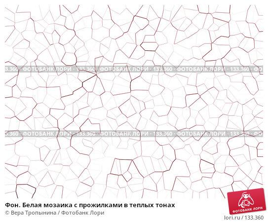Купить «Фон. Белая мозаика с прожилками в теплых тонах», иллюстрация № 133360 (c) Вера Тропынина / Фотобанк Лори