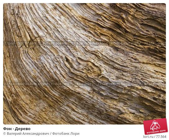 Фон - Дерево, фото № 77564, снято 27 мая 2017 г. (c) Валерий Александрович / Фотобанк Лори