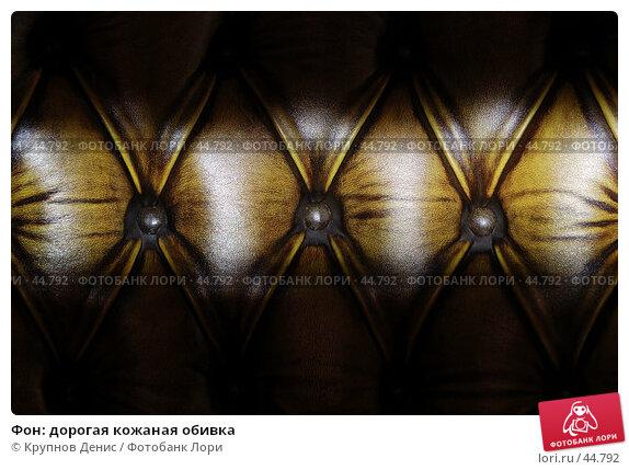Фон: дорогая кожаная обивка, фото № 44792, снято 18 апреля 2007 г. (c) Крупнов Денис / Фотобанк Лори