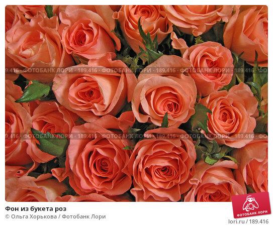 Фон из букета роз, фото № 189416, снято 6 декабря 2007 г. (c) Ольга Хорькова / Фотобанк Лори