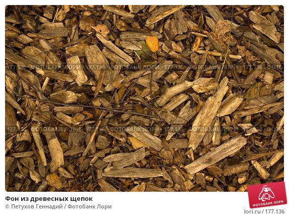 Купить «Фон из древесных щепок», фото № 177136, снято 8 июля 2007 г. (c) Петухов Геннадий / Фотобанк Лори