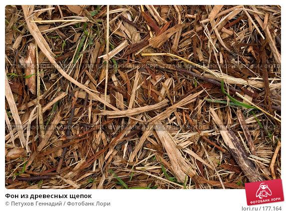 Купить «Фон из древесных щепок», фото № 177164, снято 8 июля 2007 г. (c) Петухов Геннадий / Фотобанк Лори