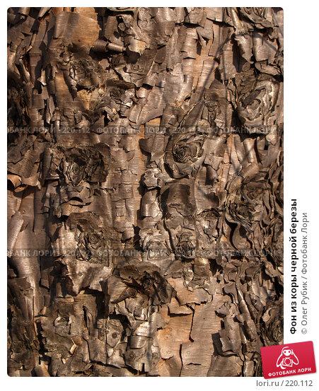 Купить «Фон из коры черной березы», фото № 220112, снято 9 марта 2008 г. (c) Олег Рубик / Фотобанк Лори